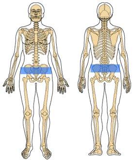からだケアルーム クオリア 仙腸関節の位置